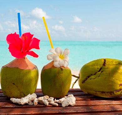Bebida Maldivas