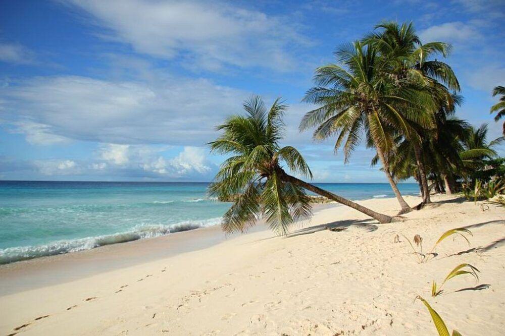 ¿Qué hacer en Didhdhoo, Maldivas?