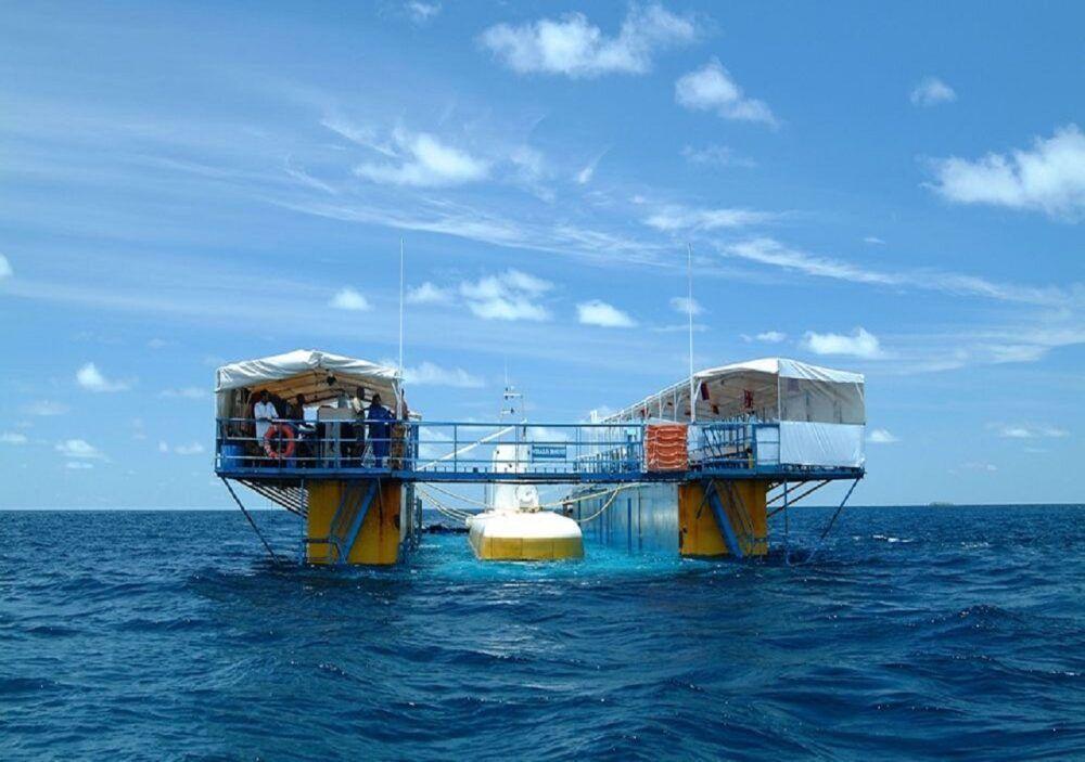 Whale Submarine Maldives, Maldivas