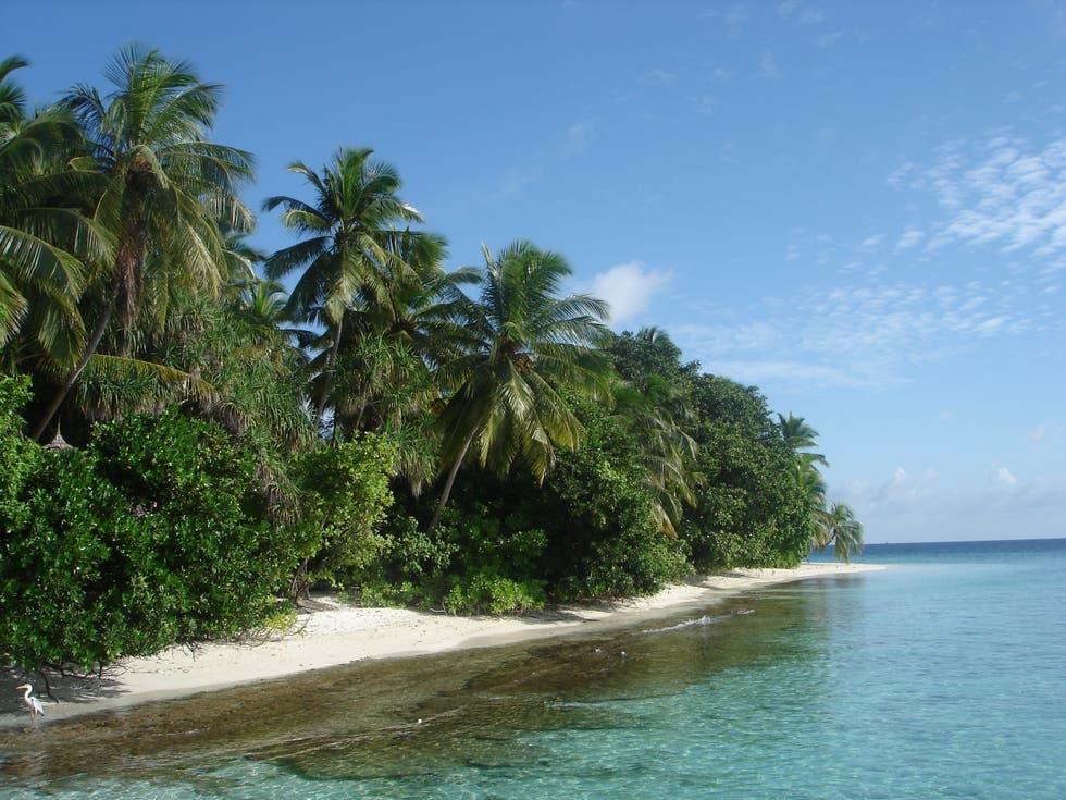 Playas en Guraidhoo