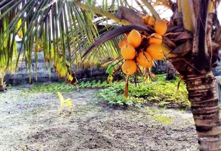 Qué hacer en Hithadhoo, Maldivas