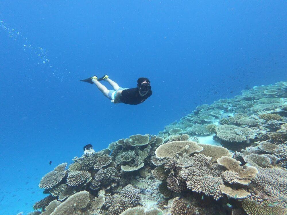 excursiones de snorkel en maldivas