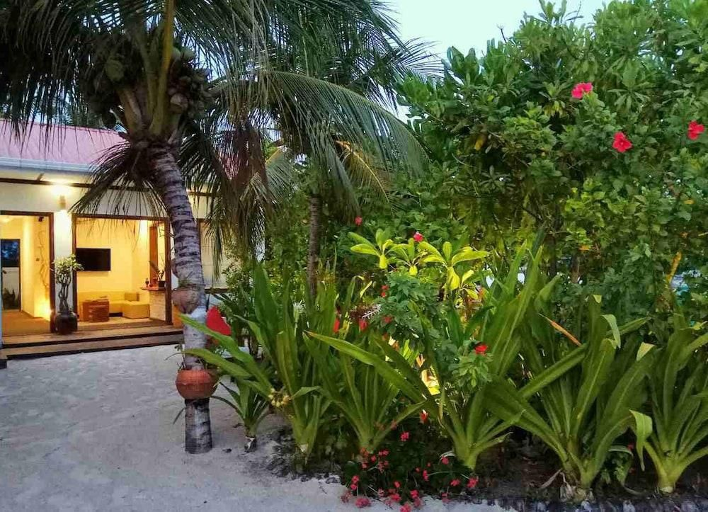 Oliva Palm Cottages