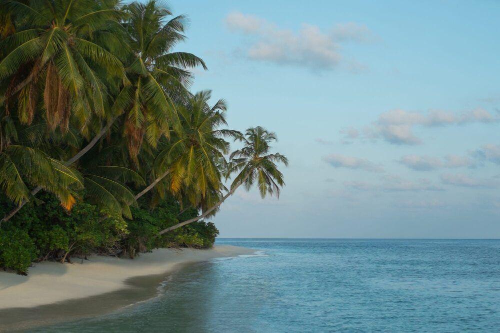 ¿Qué hacer en Rinbudhoo, Maldivas?